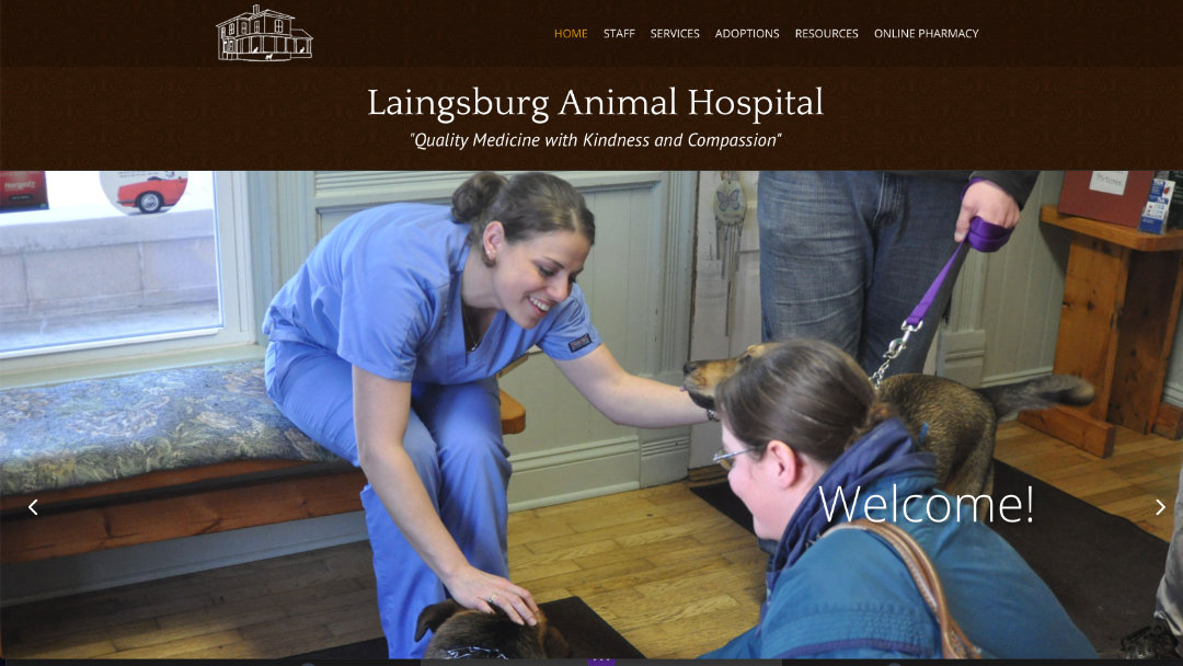 Home Page of the Laingsburg Animal Hospital website project
